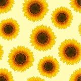 Orange Yellow Sunflower Seamless on Beige Ivory Background. Vector Illustration.  royalty free illustration