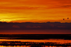 Orange and Yellow Sunrise. An orange and yellow sunrise in Tierra del Fuego, Argentina Stock Photography