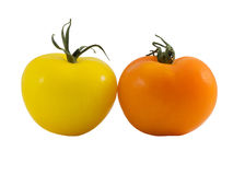 Orange and Yellow Tomatos. Isolated on white Royalty Free Stock Photo