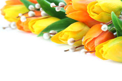 Orange and yellow tulips border Stock Images