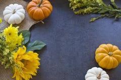 Mini Pumpkins & Flowers Background. Orange, yellow and white mini pumpkins & flowers on a slate background Royalty Free Stock Images