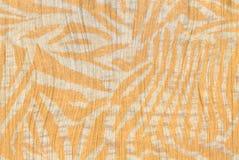 Orange Zebra Background Royalty Free Stock Photography