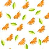 Orange, Zitrone auf weißem Hintergrund Nahtloses Muster Auch im corel abgehobenen Betrag Stockbilder