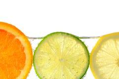 Orange Zitrone- und Kalkscheiben im Wasser Lizenzfreie Stockfotos