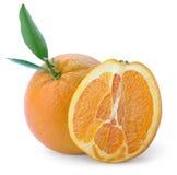 Orange Zitrusfrucht Stockfoto