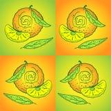 Orange zum gelb-orangeen Hintergrund stock abbildung