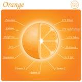 Orange Zusammensetzung Lizenzfreies Stockbild