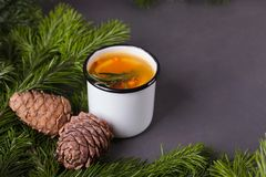Orangeade curative d'hiver avec l'argousier, le romarin, l'épice, les branches de sapin et les cônes de cèdre Fond gris, l'espace photographie stock