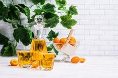 Orangeade transparente photo stock