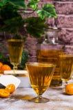 Orangeade transparente images libres de droits