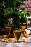 Orangeade transparente image libre de droits