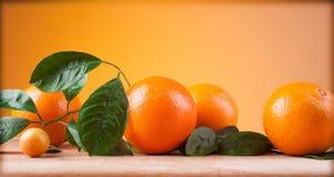 Orangen Lizenzfreie Stockbilder