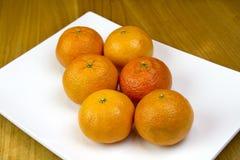 6 Orangen auf Teller Lizenzfreies Stockfoto