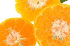 Orangen auf weißem Hintergrund Lizenzfreie Stockfotos