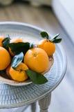 Orangen in der Schüssel gesetzt auf Metallbehälter lizenzfreies stockfoto