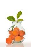 Orangen in einem Glas Stockfotografie