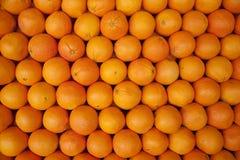 Orangen in einer Reihe Stockfotos
