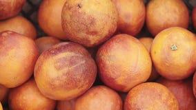 Orangen ernten im Markt Citrus sinensis stock footage