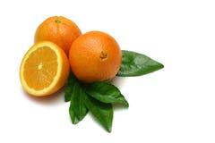 Orangen II Stockbilder