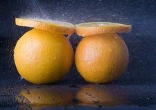 Orangen im Regen Stockfotografie
