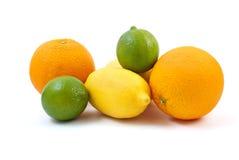 Orangen, Kalke und Zitrone Stockfotografie