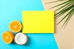 Orangen, Kokosnuss, Palmblätter und Quadrat mit Raum für Text auf dem Hintergrund mit zwei Tönen lizenzfreies stockfoto