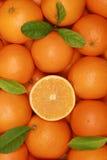 Orangen mit Blättern in einem Kasten Lizenzfreies Stockbild