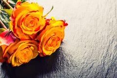orangen steg steg yellow Flera orange rosor på granitbakgrund Fotografering för Bildbyråer