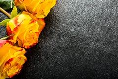 orangen steg steg yellow Flera orange rosor på granitbakgrund Royaltyfria Bilder