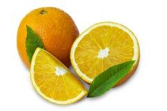Orangen und Blätter Stockbild