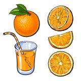 Orangen und ein Glas frisch zusammengedrückter Saft, Vektorskizze Lizenzfreie Stockfotos