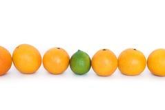 Orangen und Kalk Stockfotos