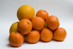 Orangen und Klementinen stockbild