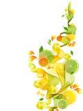 Orangen- und Limettensaftspritzen mit abstrakter Welle Stockfoto