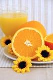 Orangen und Saft stockbild