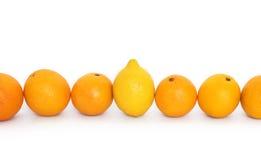 Orangen und Zitrone Stockbilder
