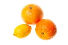 Orangen und Zitronenfrüchte Lizenzfreies Stockfoto