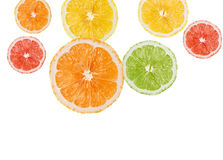Orangen- und Zitronescheiben Stockfotografie
