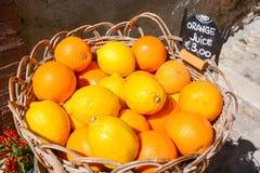 Orangen von der italienischen Landschaft Lizenzfreies Stockbild
