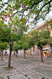 Orangenbäume in einem kleinen Quadrat in Sevilla, Spanien Stockfotos