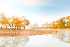 Orangenbäume nähern sich ruhigem Fluss am Morgen Stockbild