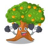 Orangenbaum der Eignung lokalisiert mit dem Maskottchen vektor abbildung