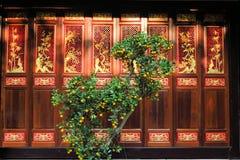 Orangenbaum vor der Holztür, buddhistisch stockbild