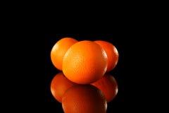 Orangenfrüchte Lizenzfreies Stockbild