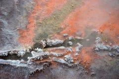 Orangenhintergrund des heißen Frühlinges Stockfoto