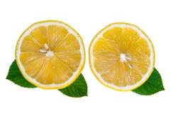 Orangenschnitt Lizenzfreie Stockfotos