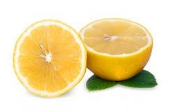 Orangenschnitt Stockfotos