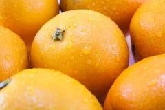 Orangentapete Stockfoto