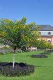 Orangerie in Darmstadt & x28;Hesse, Germany& x29; Stock Photo