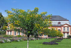 Orangerie in Darmstadt & x28;Hesse, Germany& x29; Stock Photos